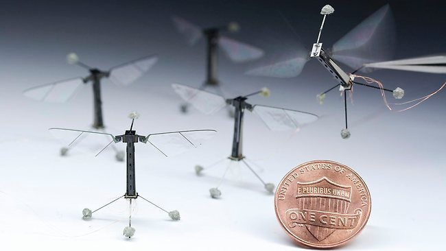 https://i0.wp.com/resources2.news.com.au/images/2013/05/02/1226634/065734-robotic-flies.jpg