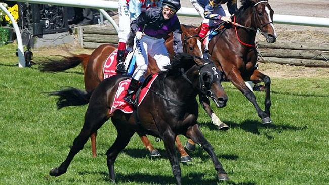 Victory ... Jockey Damien Oliver with his winning horse Fiorente.
