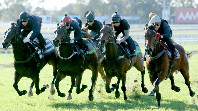 The jumpout field in the closing stages at Eagle Farm on Tuesday. Picture: Mark Cranitch.
