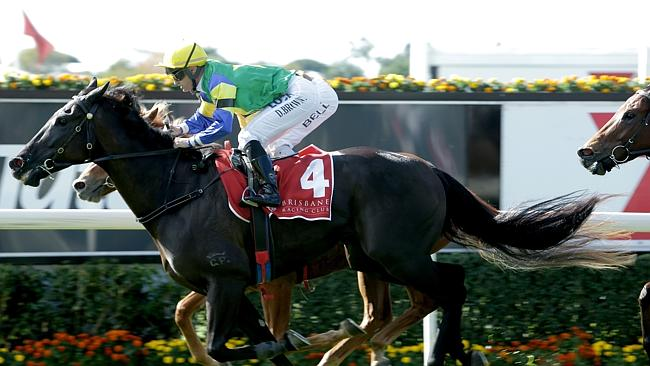 Trainer Kelly Schweida fears Cape Kidnappers still may be one run short going to 1350m se