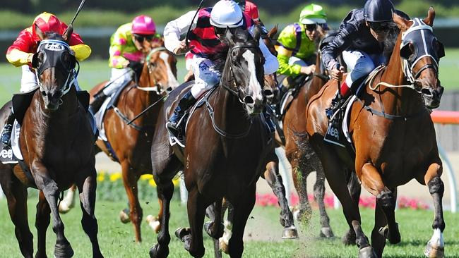 Strathayr specialist Mourinho (right) claims the Group 2 Australia Stakes at Moonee Valle