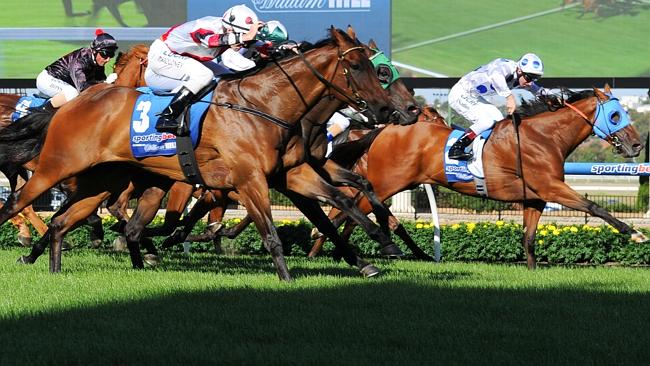Six Queensland trainers are facing potential bans over cobalt levels.