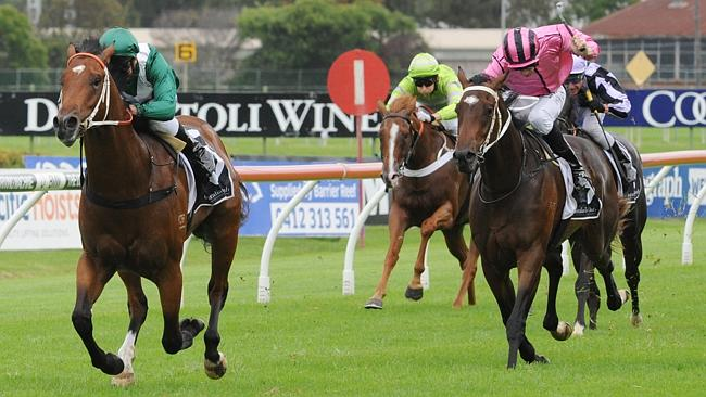 Team Hawkes will saddle-up Headwater, left, and Lake Geneva in the Golden Slipper. Pictur