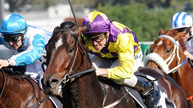Blademeister is on trial for a start in the ATC Australian Derby. Picture: Simon Bullard