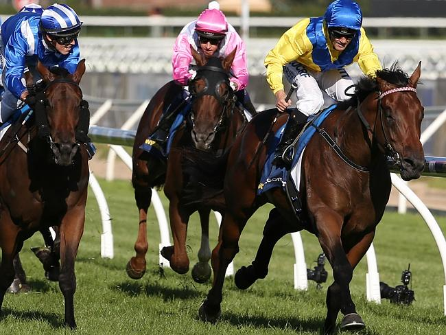 Blue Diamond winner Pride Of Dubai is heavily favoured to win the Group 1 Sires Produce o
