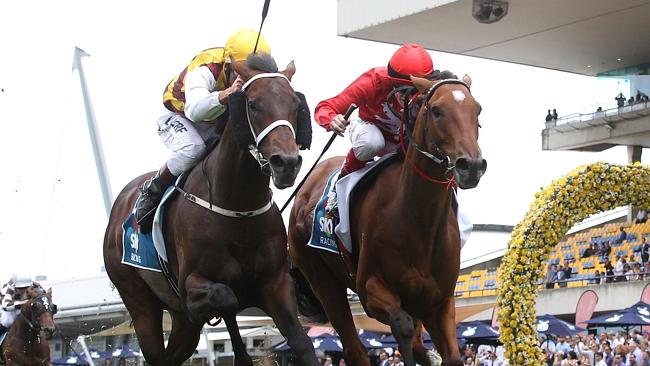 Preferment and Volkstok'n'barrell will do battle again in the Derby.