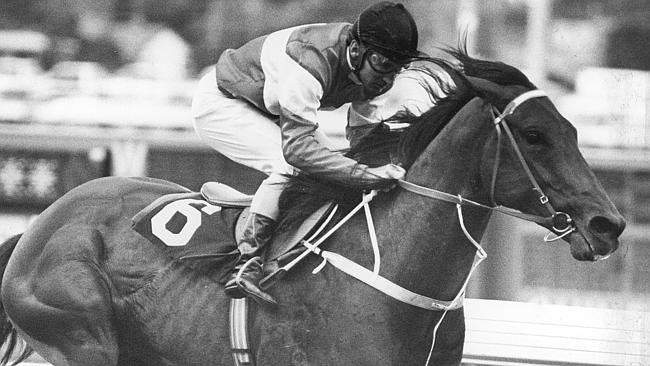 Strawberry Road won six Group I races in three countries, including the 1983 Cox Plate