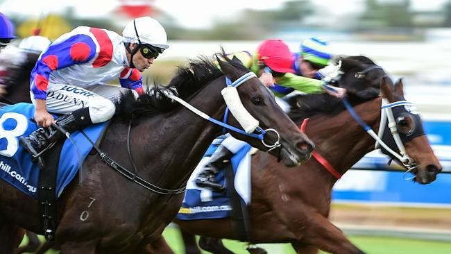 Dwayne Dunn steers Politeness down the outside to score at Caulfield.
