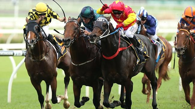 Wandjina, centre, is narrowly beaten by Dissident in the All Aged Stakes.