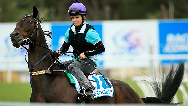 The Gap Waterhouse-trained Cafe Society was bought from the same sale as Doomben Cup winn
