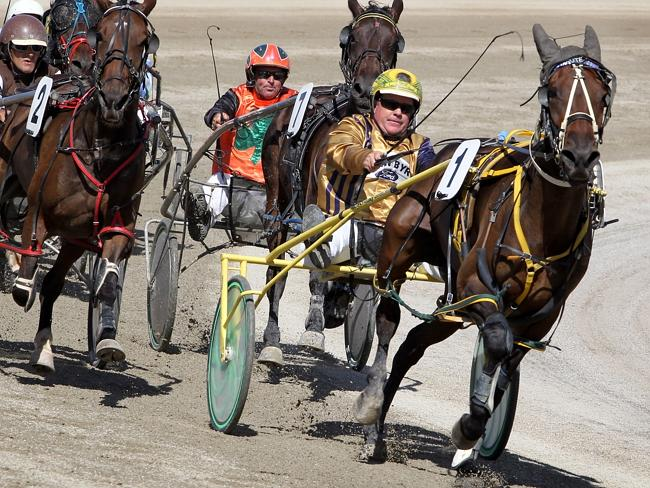 Harness racing driver-trainer Darrel Graham and Rollon Las Vagas head the field during a