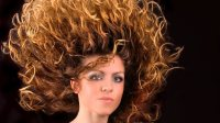 **FPOTD...**//Frivolous Post of the Day...// **An updo ...