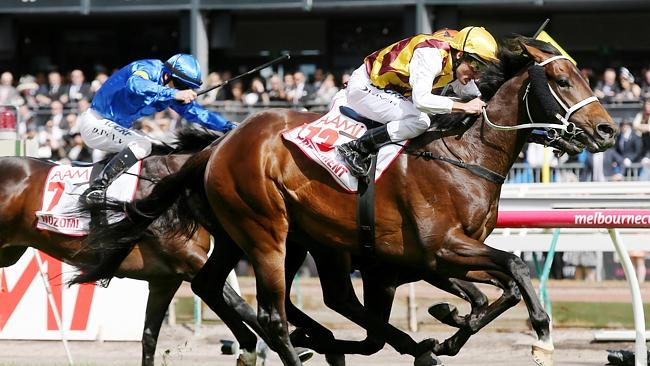 Looks a good thing: Damien Oliver combines with the Chris Waller-trained Preferment to wi