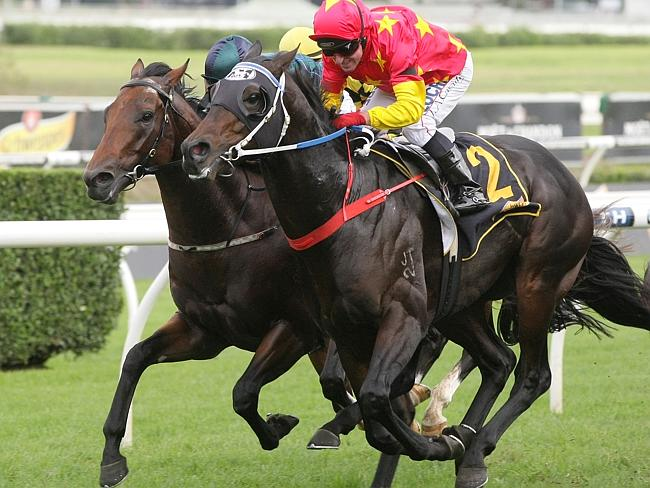 Dissident, ridden by Jim Cassidy, fights off a challenger to win the All Aged Stakes. Pic