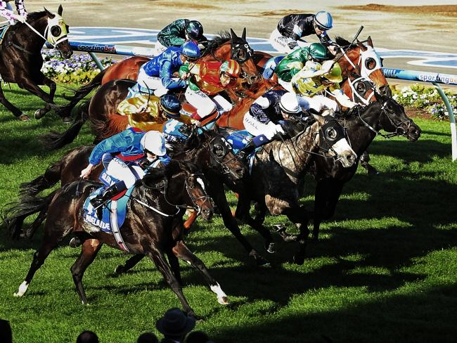 Adelaide charges home out wide to his famous Cox Plate victory. Picture: Colleen Petch