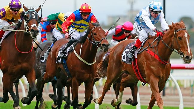 Mornington trainer Matt Laurie believes the positive result was caused by cross-contamina