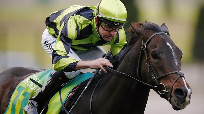 Dwayne Dunn steers Lazyaxl to victory at Moonee Valley on Wednesday. Picture: Wayne Ludbe