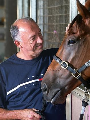 Concerns: trainer Rob Heathcote. Picture: Darren England