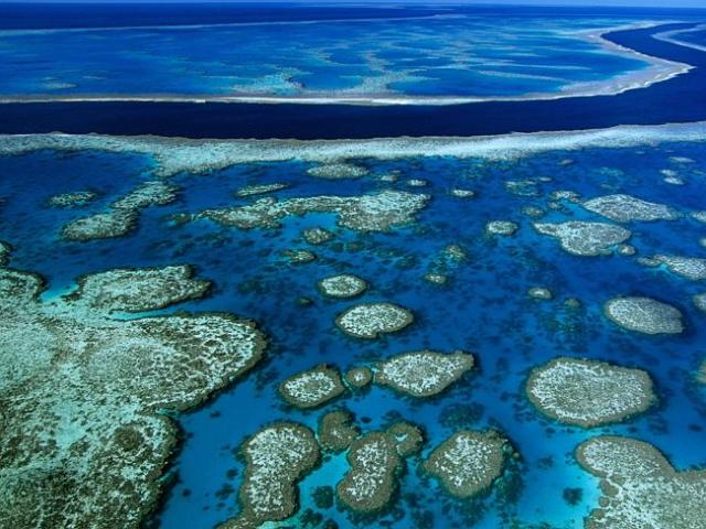 Australia's beautiful Great Barrier Reef is under threat of pollution. Picture: Getty