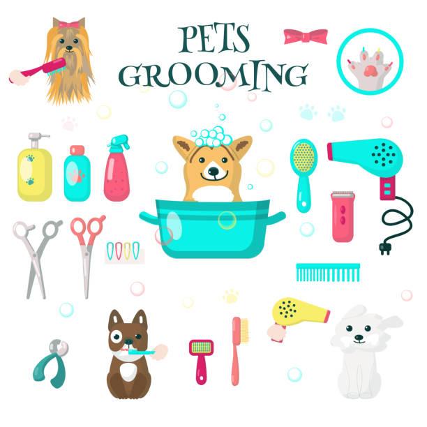 Best Grooming For Dogs: Home Grooming Versus Professional Grooming!