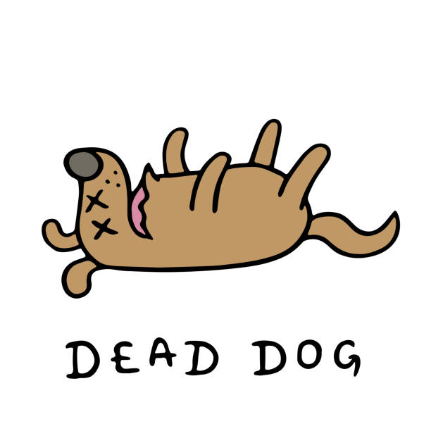why do my dogs keep dying
