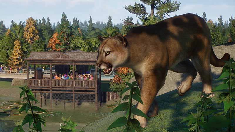 Planet Zoo North America Animal Pack Cougar