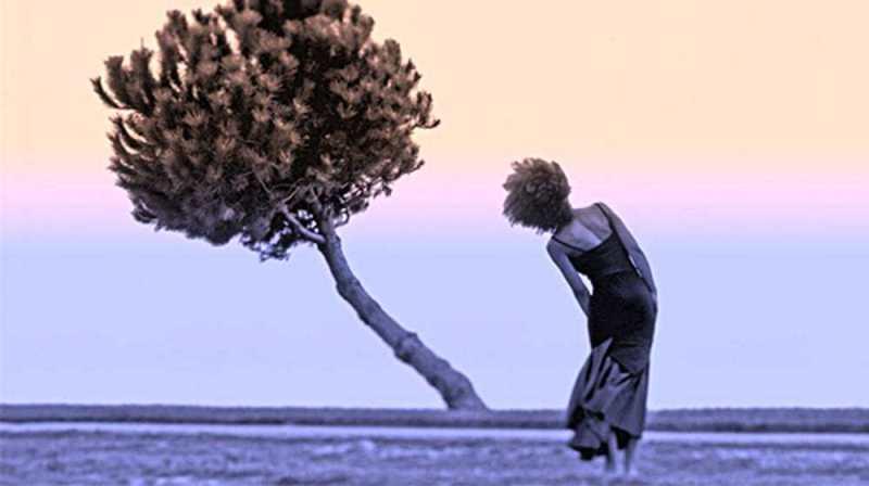 Parliamo della resilienza: l'arte di piegarsi senza spezzarsi