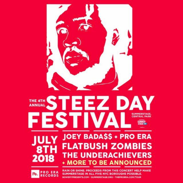 STEEZ Day