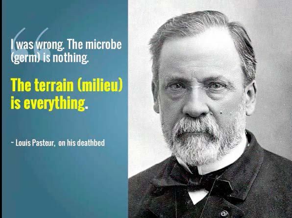 Image result for Pasteur quote milieu