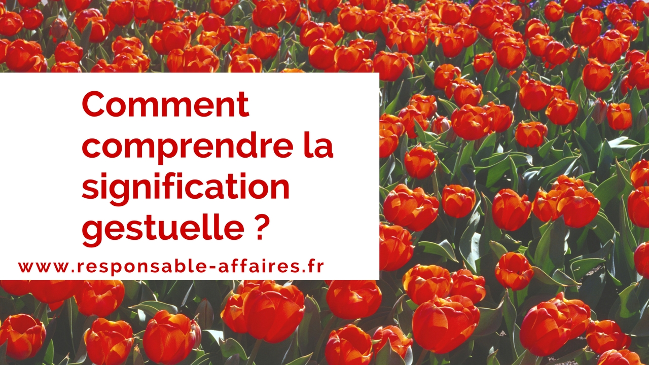 Comment comprendre la signification gestuelle ?