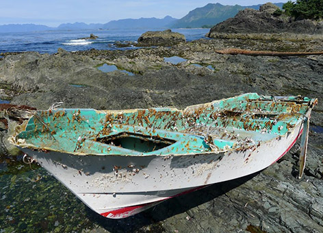 The small boat which washed up on remote Spring Island, British Columbia, Canada, was positively identified as a vessel lost during the 2011 Japan tsunami. Credit: Kevin Head.