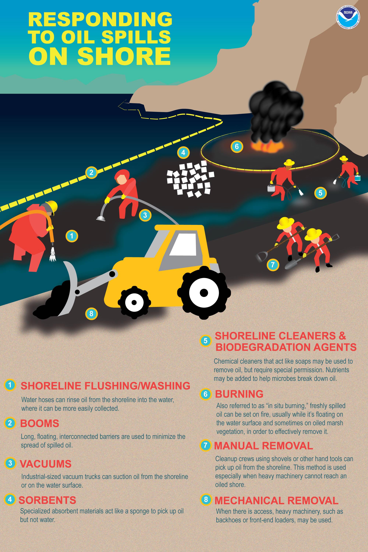How Do Oil Spills Get Cleaned Up On Shore