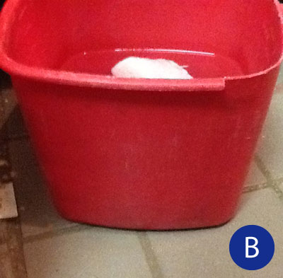 unlabeled sanitizer bucket