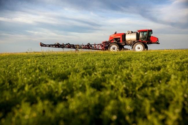 Pesticides and Food | ResproFSP.com