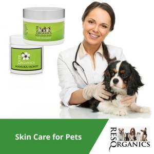 All Natural Pet Skin Care Helps with All Skin Conditions
