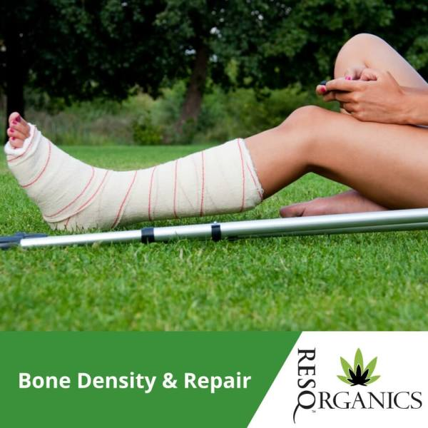 Bone Density Remedy