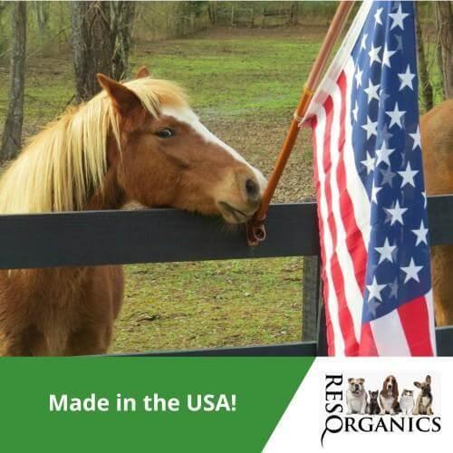 Horse Skin Care Treatment Cream - ResQ Organics Pets