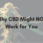 Why CBD Might Not Work For You
