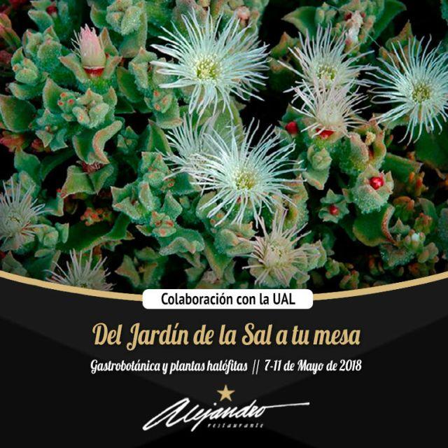 Colaboración Restaurante Alejandro y Universidad de Almería