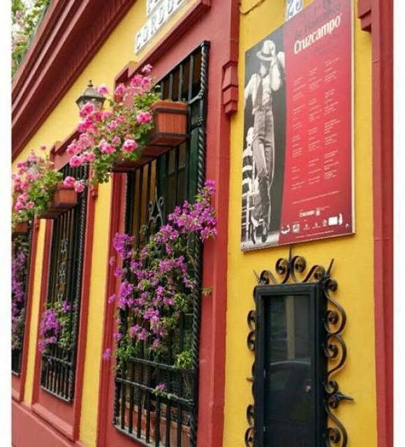 Diego Gm en Restaurante Sociedad Plateros Maria Auxiliadora 01
