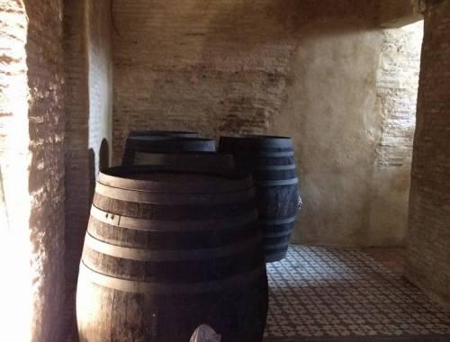 Despacho de vinos a granel Sociedad Plateros María Auxiliadora 06