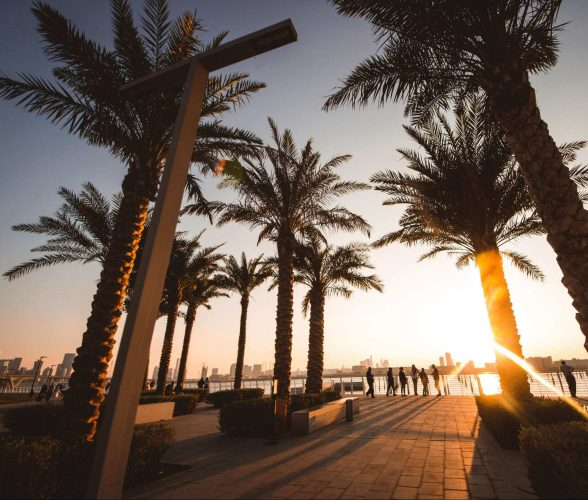 sunset with palm trees landscapes