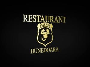 Restaurant Scorpion Hunedoara, termeni si conditii