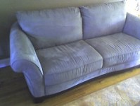 bed-bug-info-couch
