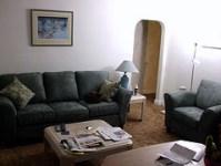 household-bugs-furniture-hide