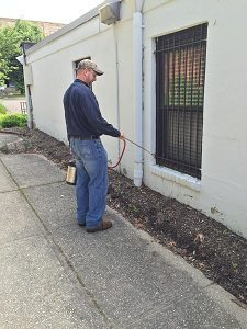 pestcontrol-services-photo