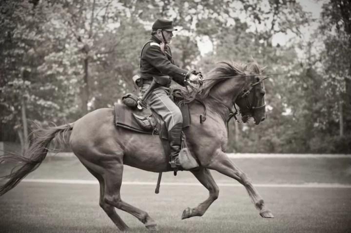Horse-Charging(pp_w860_h571).jpg