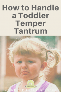 How to Handle a Toddler Temper Tantrum