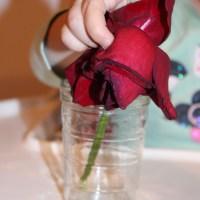 Atelier d'inspiration Montessori : dans ma cuisine
