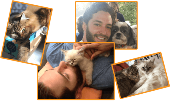 brian and other dogs